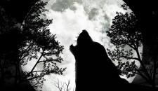 Il sonno e la luna, tutti licantropi?