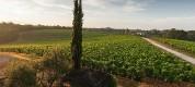 Toscana in settembre per il relax