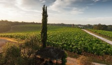 Tuscany in September: rhythm and vitality
