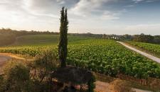 Toscana in settembre: ritmo e vitalità