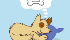 Gli animali sognano?