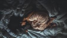 Biphasic sleep