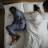 La temperatura corporea durante il sonno